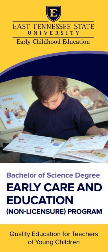 B.S. in Early Care and Education Brochure
