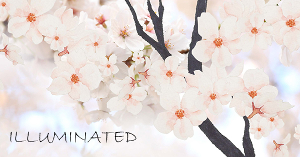 image for Illuminated: Graduate Student Research Magazine